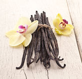 Vanilla sticks with a flower. Royalty Free Stock Photos