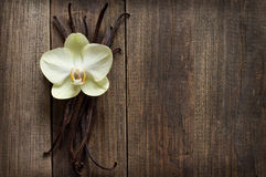 Vanilla sticks and flower on the wood. Group of vanilla sticks and yellow flower on the wood background Stock Photo