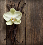 Vanilla sticks and flower on the wood. Group of vanilla sticks and yellow flower on the wood background Stock Photography