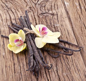 Vanilla sticks with a flower. Royalty Free Stock Image