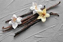 Vanilla sticks and flowers. On grey background Stock Photos