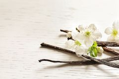 Vanilla sticks and flowers. On wooden background Stock Photos
