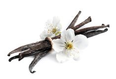 Vanilla sticks and flowers. On white background Royalty Free Stock Photo