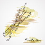Vanilla sticks Stock Photos