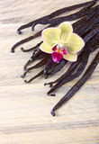 Vanilla sticks and orchid Stock Photo