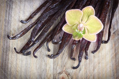 Vanilla sticks and orchid Royalty Free Stock Photos