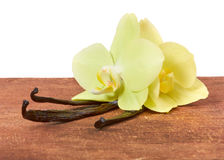 Vanilla sticks and orchids Royalty Free Stock Photo
