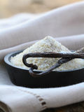 Vanilla sugar with natural stick Royalty Free Stock Photos