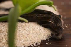 Vanilla sugar and vanilla beans Royalty Free Stock Photo