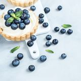 Vanilla tarts with blueberry berries. stock photography