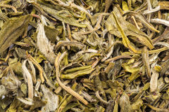 Vanilla Tea Stock Images
