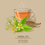 Vanilla tea illustration Stock Image
