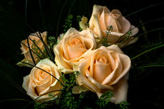 Vanilla Thoughts. Romantic bouquet of gentle roses  floral impression Stock Photography