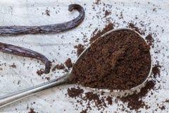 Vanilla and vanilla beans on a spoon macro.  Stock Image
