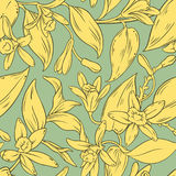 Vanilla vector pattern Royalty Free Stock Images