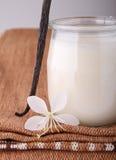Vanilla yogurt Stock Photos