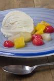 Vanilla yogurt ice cream on a plate Stock Photos