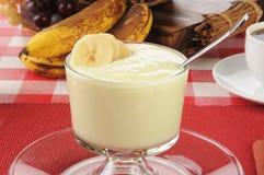 Vanilla yogurt with sliced bananas. A dish of organic vanilla yogurt with sliced bananas Stock Images