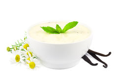 Vanilla yogurt on white Stock Photos