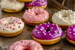 Vanille cuite au four fraîche Bean Iced Doughnuts Photos stock
