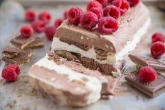 Vanille czekolady lody Fotografia Stock