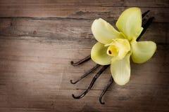 Vanille-Hülsen und Blume Lizenzfreies Stockbild