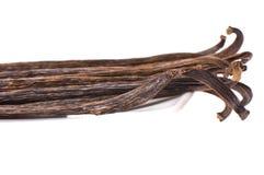 Vanillebohnen lizenzfreie stockbilder