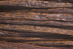 Vanillebohnen Lizenzfreies Stockfoto