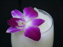 Vanillegetränk mit purpurroter Orchidee Stockbilder