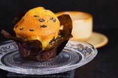 Vanillemuffin mit Schokoladensplittern Stockfotos