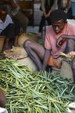 Vanilleselectie uit Madagascar Stock Foto
