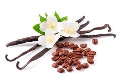 Vanillestöcke und Kaffeebohnen mit der Blume lokalisiert auf weißem Hintergrund Lizenzfreie Stockfotos