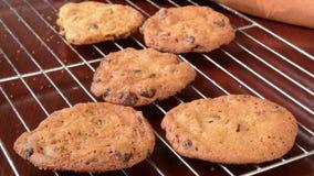 Vanishing cookies. Fresh baked cookies vanishing from a cooling rack stock footage