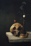 Vanitas Life, death and resurrection Stock Photography