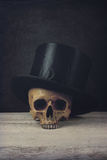 Vanitas with Skull and Topper Hat Stock Image