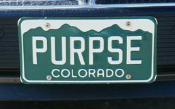 Vanity License Plate - Colorado Stock Photos