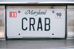 Vanity License Plate - Maryland Stock Photos