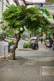 Vanlig gata på utkanten av Bangkok Fotografering för Bildbyråer