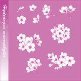 Vanlig hortensiablommabeståndsdel Royaltyfri Foto