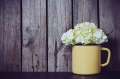 Vanlig hortensiablommor Arkivbild