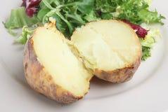 vanlig potatis för omslag fotografering för bildbyråer