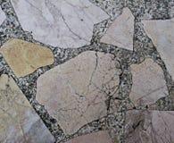 Vanliga stens modell Arkivfoton