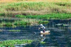 VANLONG自然手段, NINHBINH,越南- 2014年11月27日-投下在手段的一名未认出的妇女螃蟹枪口 免版税图库摄影