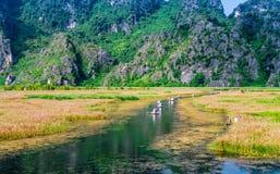 VANLONG自然手段, NINHBINH,越南- 2014年11月23日-旅行乘沿一条小河的小船的游人在手段里面 库存图片