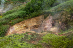 Vanna Bath Geyser in Valley of Geysers. Royalty Free Stock Images
