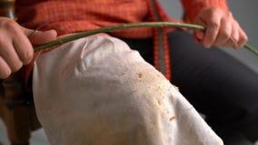vannerie La vue de l'artisan plie l'osier clips vidéos
