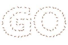 VANNO le parole create dal gruppo di formiche illustrazione 3D Fotografia Stock