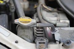 Vano motore sporco dell'automobile di controllo del liquido refrigerante fotografia stock