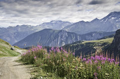 Vanoise National Park Stock Photo