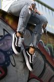 Vans Old Skool Royalty Free Stock Photo
